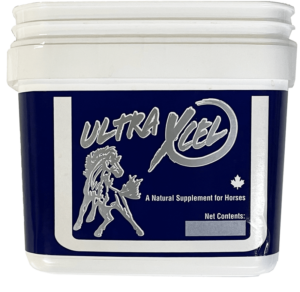 Univet ultra xcel natural supplement for equine use and improved performance for horses
